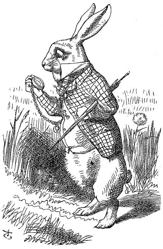 Fig. 2.04.b - The White Rabbit